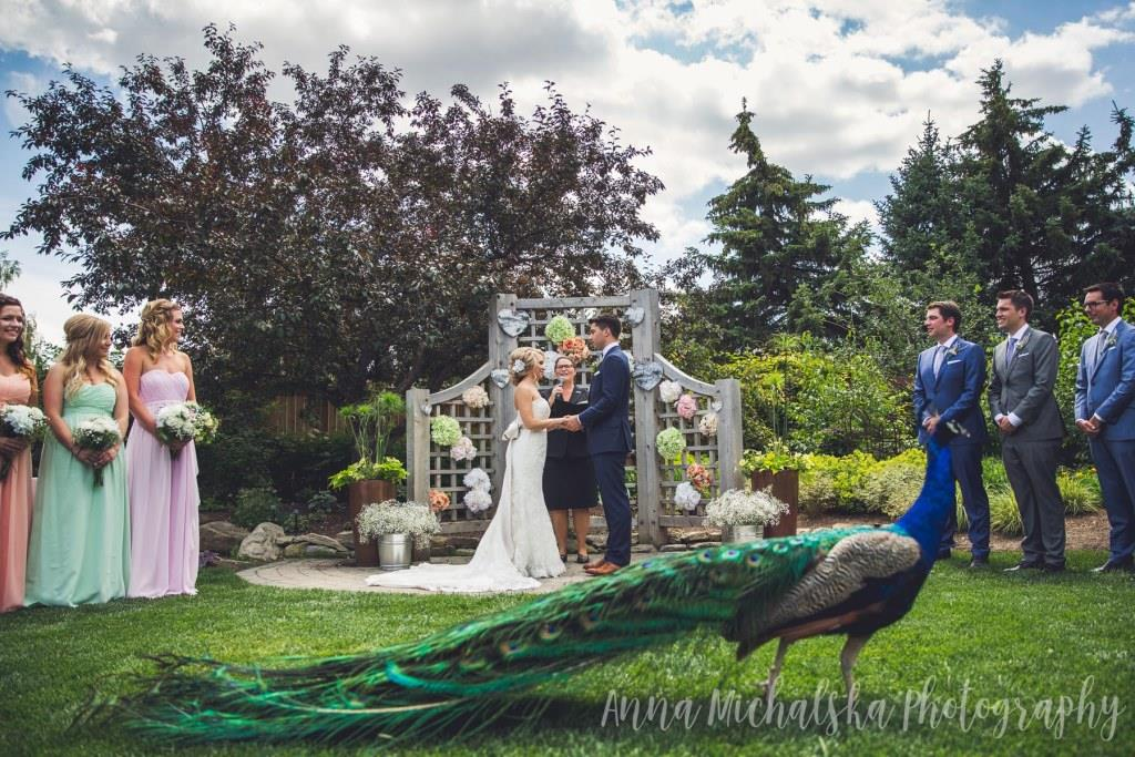 Jacqueline Hoare Officiant Anna Michalska Photography 273